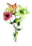 Lily and Rose flowers. Watercolor illustration Royalty Free Stock Photo