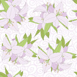 Lily seamless pattern vector. Lily seamless pattern on curl background. vector Stock Images