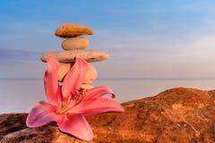 Lily on seashore Royalty Free Stock Image