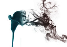 The lily from the smoke. Gradient lily which becomes smoke Stock Images