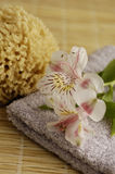 Lily Spa. Lilies on a towel with a sea sponge for a soft colored bath scene Royalty Free Stock Images