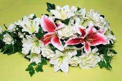 lily stargazer zdjęcia stock