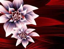 lily tła magii ilustracji