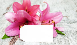 Lily with tag Royalty Free Stock Photo