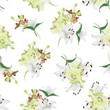 Lily and tiger orchid bouquets seamless vector print Stock Images