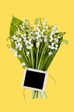 Lily of the Valey Royalty Free Stock Photo