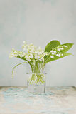 Lily of the valey in vintage Royalty Free Stock Image