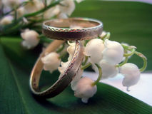 Lily of the valley. Rings, romance, love, wedding Royalty Free Stock Photography