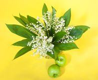 Lily of the valley and apples Stock Image