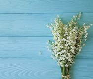Lily of the valley on a blue wooden background. Lily of the valley a blue wooden background Royalty Free Stock Photography