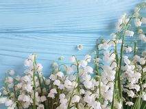 Lily of the valley element spring greeting on a blue wooden background. Lily of the valley a blue wooden background element greeting spring Stock Image