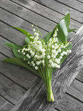 Lily of the valley bouquet Royalty Free Stock Images