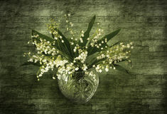 Lily of the valley bouquet stock photography