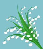 Lily of the valley. Cute bouquet of flowers. spring flowers, white flowers, spring bouquet at blue background. vector illustration in flat design Royalty Free Stock Photos
