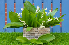 Lily of the valley decoration Stock Images