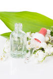 Lily of the valley essence Stock Photography