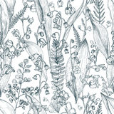 Lily of the valley with fern outline seamless pattern. Hand drawn buds, leaves and stems texture. Black and white vector. Illustration Royalty Free Stock Images
