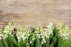 Lily of the valley flowers on wooden background. Stock Images