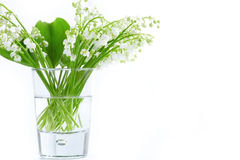 Lily of valley in glass b Stock Images