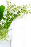 Lily of valley in glass a Stock Photo