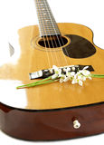 Lily of the valley on guitar strings Stock Photo
