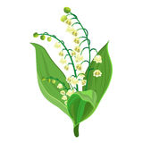 Lily Of The Valley. Icon. Vector illustration in flat design Stock Photo