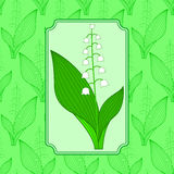 Lily of the valley illustration Royalty Free Stock Image
