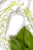 Lily of the valley and perfume bottle Stock Image
