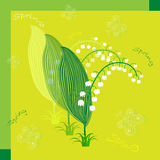 Lily of the valley. Postcard lily of the valley spring Royalty Free Stock Photography
