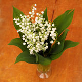 Lily of the valley in vase Stock Photo