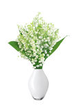 Lily of the valley in vase isolated on white Royalty Free Stock Images