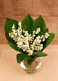 Lily of the valley, vase2 Stock Photography