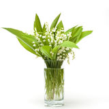 Lily-of-the-valleyblumenstrauß Stockbilder