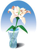 Lily in the vase. Tender creamy lily in the crystal vase, vector illustration Royalty Free Stock Images