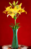 Lily in vase Royalty Free Stock Photography