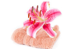 Lily in a vase, towel and cosmetic containers Stock Image