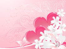 Lily white and valentine,s day Stock Photos