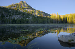 Lilypad Lake Stock Photography