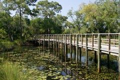 Lilypads en houten promenade stock afbeeldingen