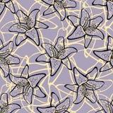 LilyPattern Arkivbild
