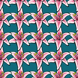 Lilys. Hand-drawn bright pattern made from pink lillys on the blue background. Vector illustration Stock Photo