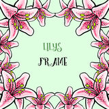 LilyVector-08. Frame made from hand-drawn colored liilys on the green background. Vector illustration Royalty Free Stock Photo