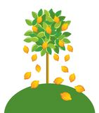 Limão-árvore. ilustração stock