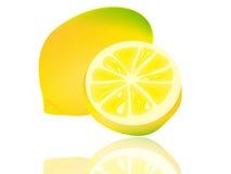 Limão ilustração stock