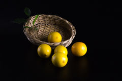 Limão Imagem de Stock Royalty Free