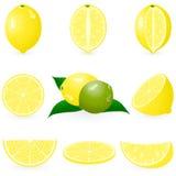 Limão ajustado do ícone Imagem de Stock