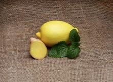 Limão - amarelo e hortelã em um fundo isolado Foto de Stock Royalty Free