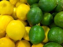 Limão amarelo e verde Fotografia de Stock Royalty Free