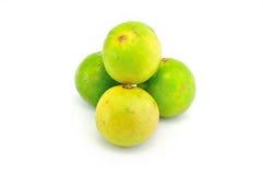 Limão asiático no fundo branco Imagem de Stock
