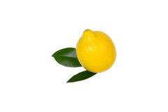 Limão com as folhas isoladas Fotos de Stock Royalty Free